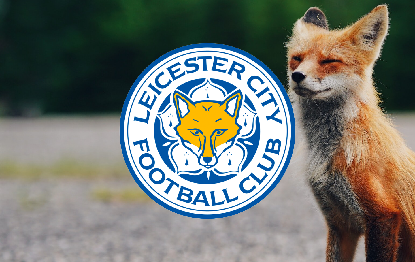 Badge of the Week: Leicester City F.C.