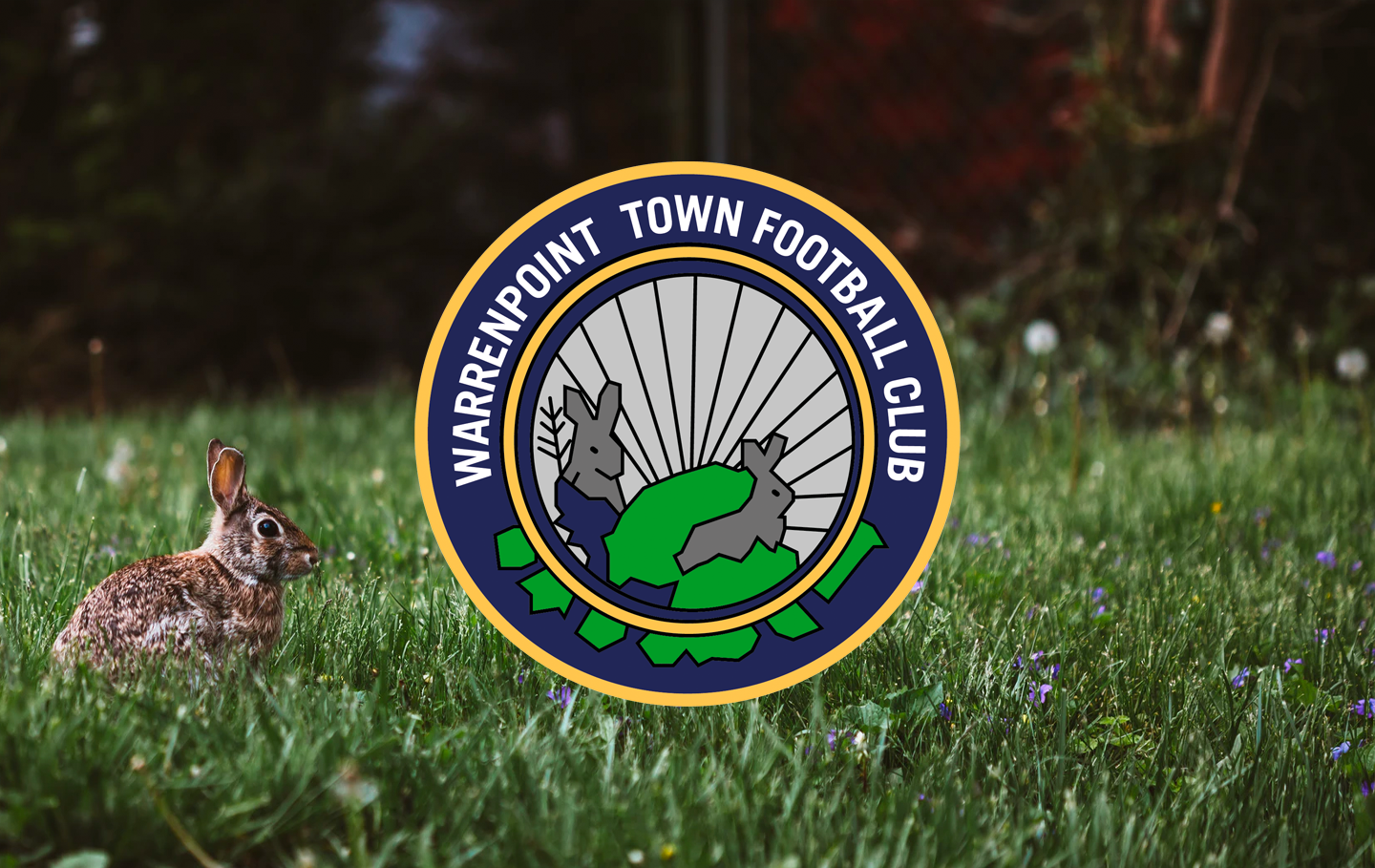 Badge of the Week: Warrenpoint Town FC